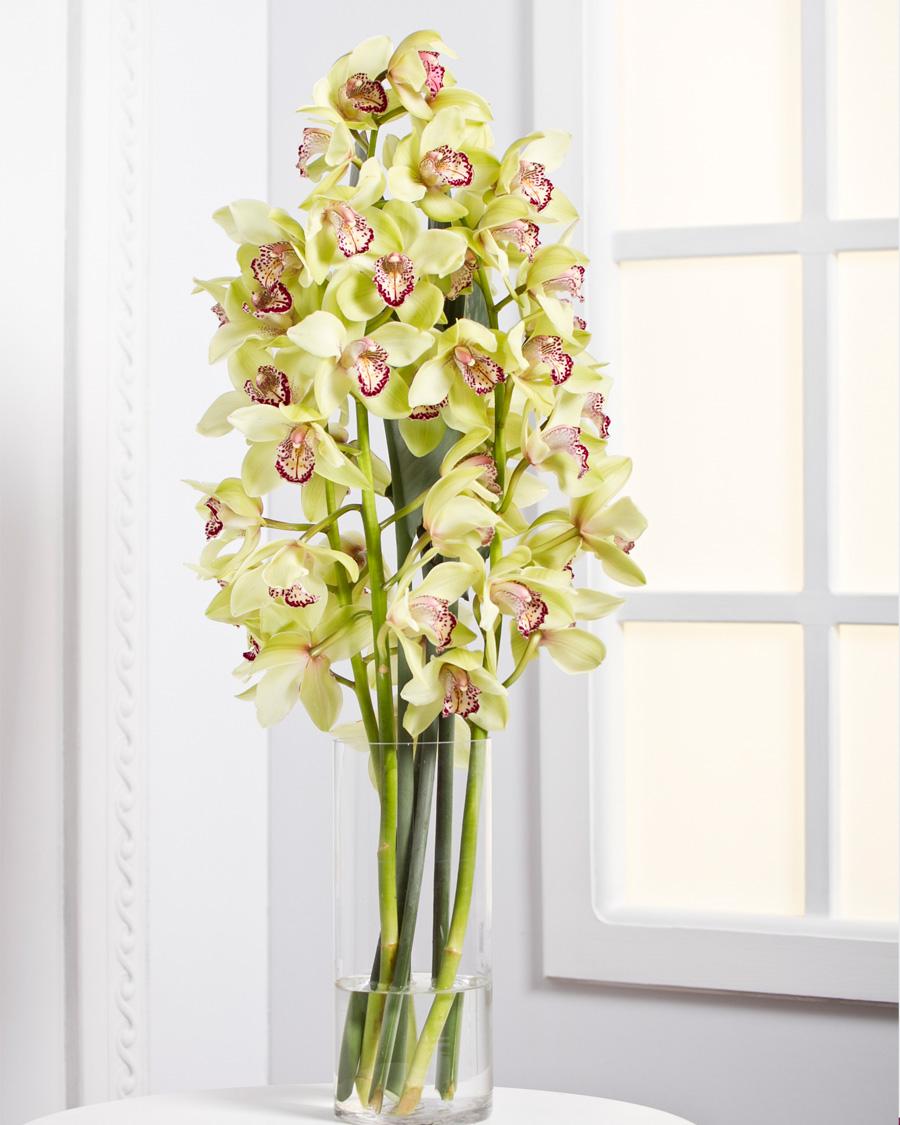 Orhideed lõikelilledena