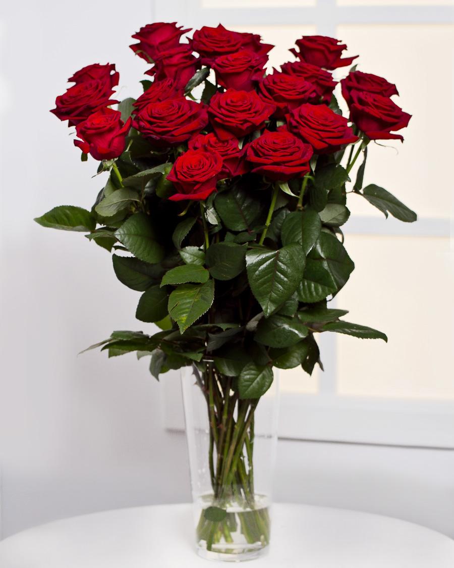 Kimp 25 punase roosiga