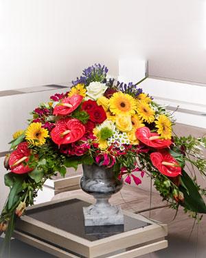Rikkalik lilleseade erksates toonides alusel (saadaval ainult Tallinnas)