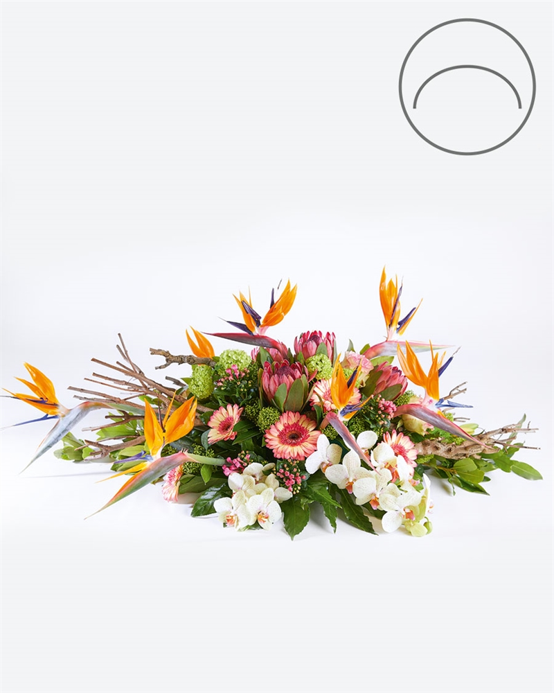 Silently here | Funeral arrangement